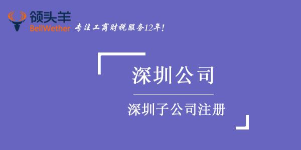 深圳子公司注册